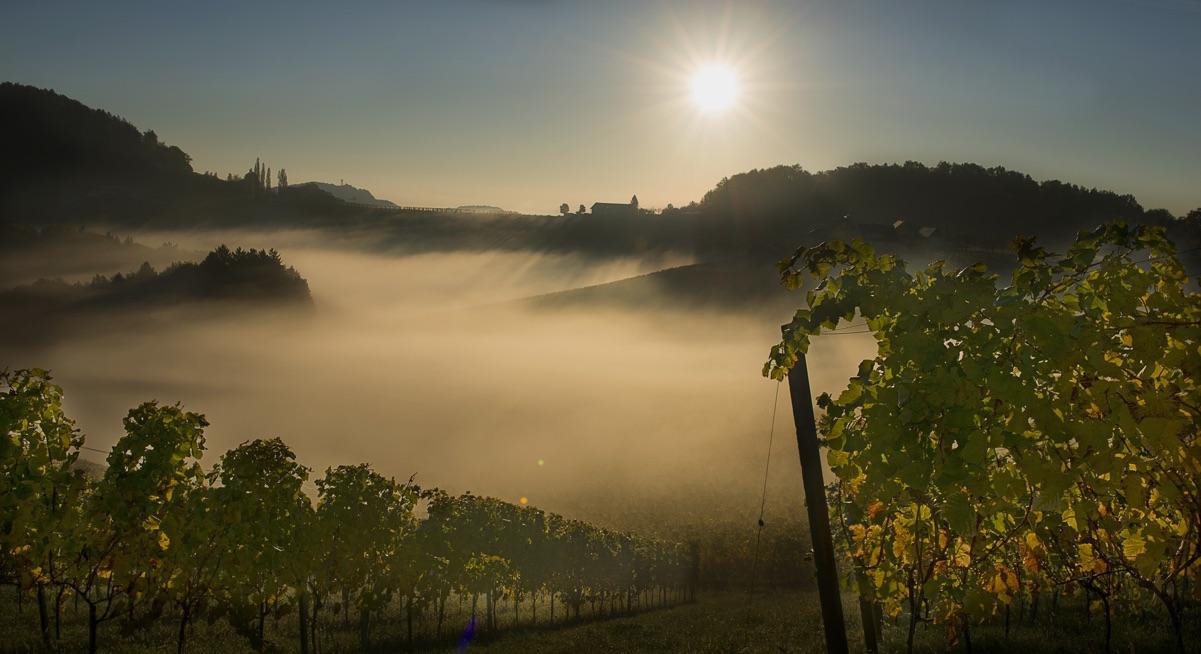Ursprung in der Steiermark